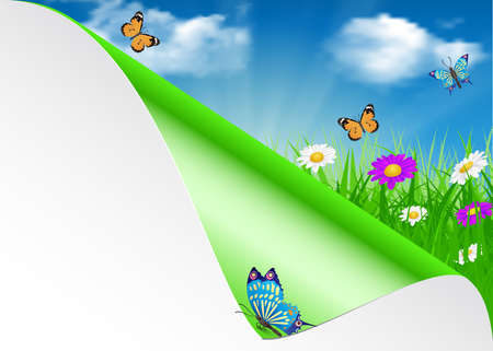 sky brunch: Spring background with sky, flowers, grass and a butterfly.  summer design flower green garden nature illustration. Vector illustration
