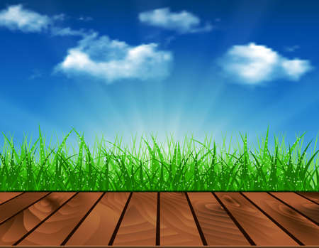 morning dew: Wooden deck in front of green grass. Beautiful spring background of blue sky. vector background summer design  green garden nature illustration. morning sunlight grass early dew. eco background