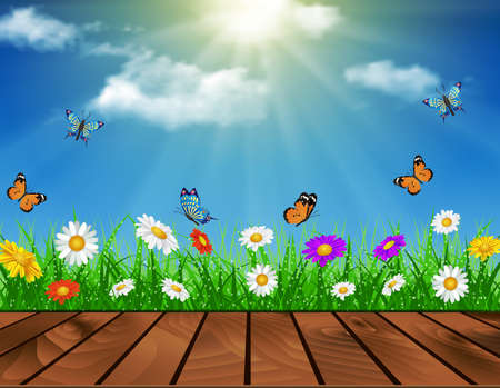daisy vector: Wooden deck in front of green grass. daisy vector background  summer design flower green garden nature illustration. Spring background of blue sky with grass and butterfly. Illustration