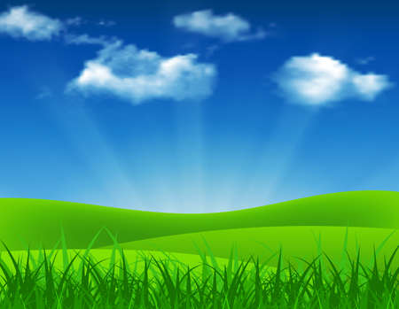 sky and grass: Nature summer background with green grass and blue sky. Vector illustration