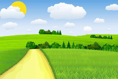 Summer landscape with meadows . Road and forest, nature landscape, vector background. vector illustration in flat design