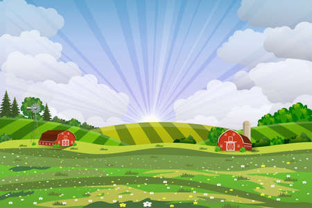 Cartoon farm field green seeding field, red barn on a green farmers field, large field farming striped, Farm flat landscape. Organic food concept for any design Ilustração