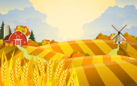 Cartoon fall farm scene with wheat fields. Farm flat landscape. Organic food concept for any design