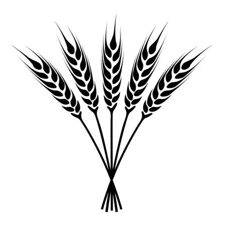rye: silhouette ears of wheat icon. Crop symbol isolated on white background. illustration.