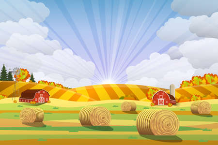 hay bales: Countryside landscape with haystacks on fields. Rural area landscape. Hay bales. Farm flat landscape. Organic food concept for any design Illustration