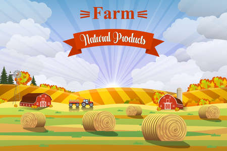 rural area: Countryside landscape with haystacks on fields. Rural area landscape. Hay bales. Farm flat landscape. Organic food concept for any design Illustration