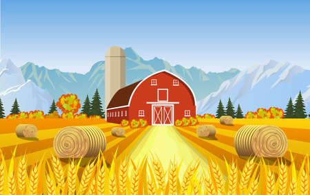 Countryside landscape with haystacks on fields. Farm flat landscape. Organic food concept for any design Illustration