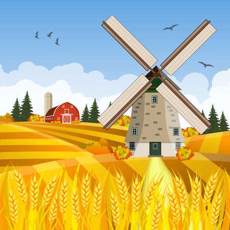 Cartoon beautiful fall farm scene with wheat fields. Farm flat landscape. Organic food concept for any design