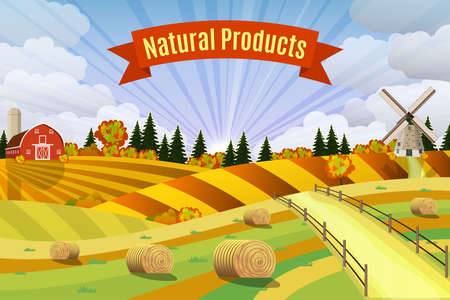 rural areas: Countryside landscape with haystacks on fields. Rural area landscape. Hay bales. Farm flat landscape. Organic food concept for any design Illustration