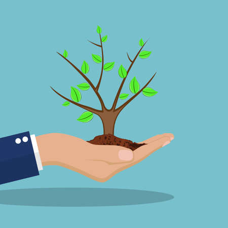 Ecology concept. . Tree with soil in hands human. Vector illustration in flat design Illustration