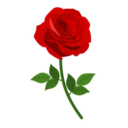 Red Roses icon