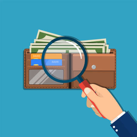 retail equipment: Hand with magnifying glass and leather wallet with dollar cash, coins, bank cards. Check the financial stability. Vector illustration in flat style