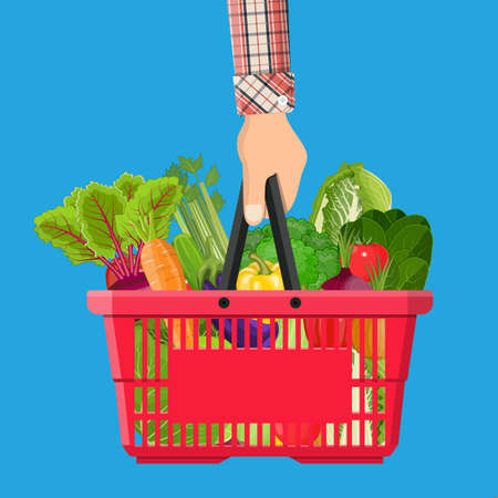 Full basket with different healthy food in hand. Grocery store. vector illustration in flat style Illustration