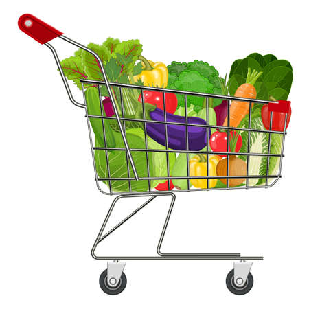 chinese food container: Full supermarket shopping cart with different healthy food. Supermarket shopping basket with vegetables . vector illustration in flat style.