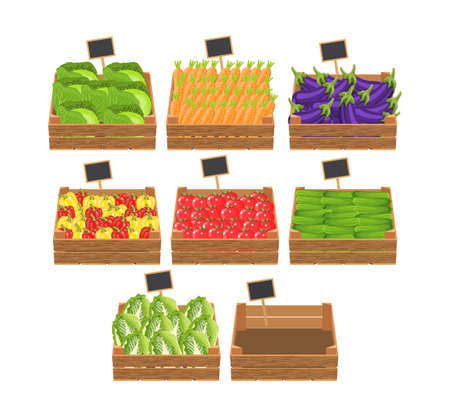 crates with fresh vegetables. Natural, healthy food concept. Organic vegetables from the farm collected in the wooden box. Vector illustration in flat style