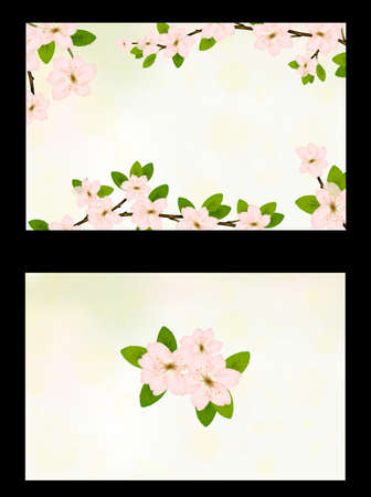 Business card vector template with cherry flower blossom branch business card vector template with cherry flower blossom branch peach bloom sakura branch with colourmoves