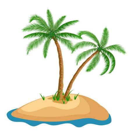 Palm tree in island on isolated background