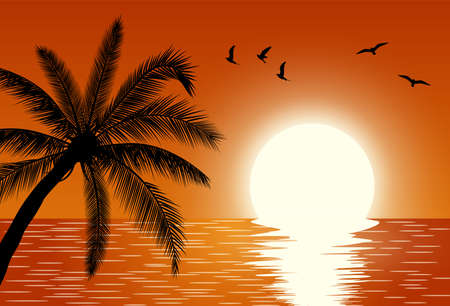 Sunset over the sea. Summer Sunset Landscape. Sunrise with Palm Tree. Tropical Paradise. Vector illustration
