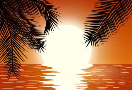 beach sunset: Sunset over the sea. Summer Sunset Landscape. Sunrise with Palm Tree. Tropical Paradise. Vector illustration