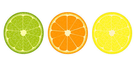 Citrus fruit slices icon