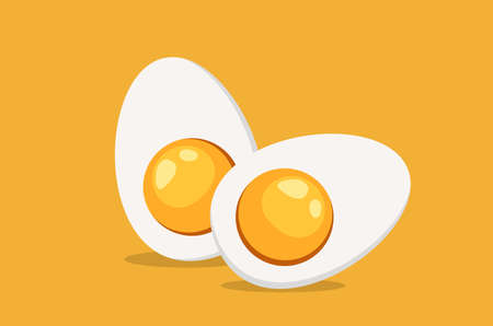 Hard Boiled Sliced Egg with the yellow yolk and the white albumen. Vector illustration in flat style