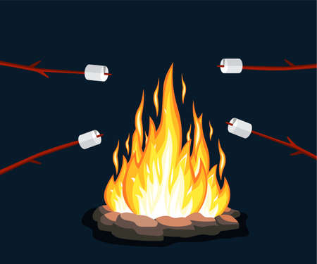 Bonfire with marshmallow, stone, rock Fire flame at night. Scout in forest. Burn gas, wood. Bright light, blaze in camp.