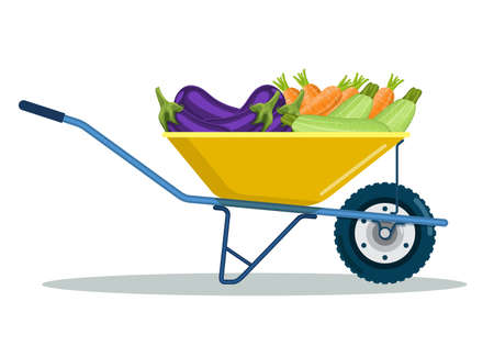 Garden cart with zucchini, eggplant, carrot.