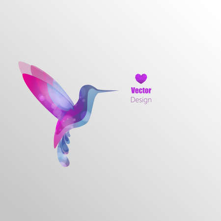 dragonfly wing: Flying hummingbird, colorful vector abstract illustration Illustration