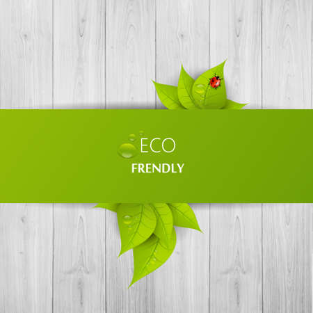 web site design template: Green eco abstract design, Vector illustration eps 10