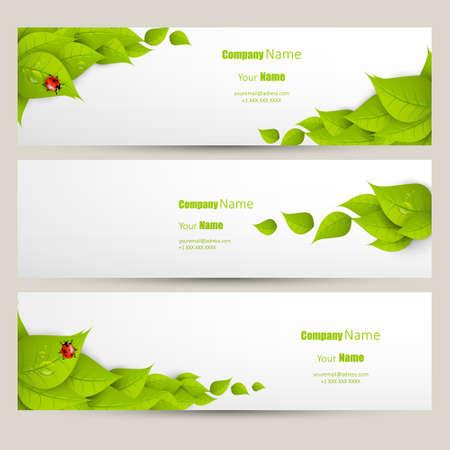 Eco banner set, fresh green leaves design Vector