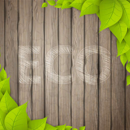dilapidated: Eco Background. Green leaves on wood board. Realistic Vector