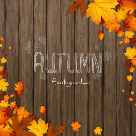 fall leaves: Natural background with autumn leaves and wooden board. Vector illustration.