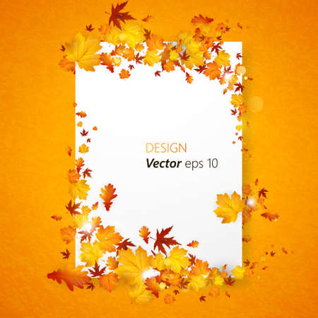 fall beauty: White blank on background with autumn maple leaves. Vector