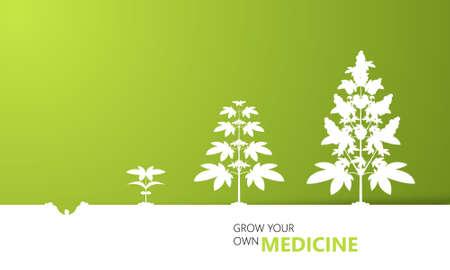 crescita Cannabis concetto di fondo, vettore,