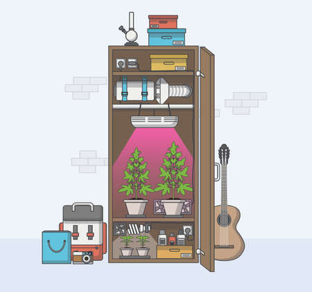 indoor bud: Flat Design, Quality of medical cannabis growing in indoor cabinet. Vector illustration