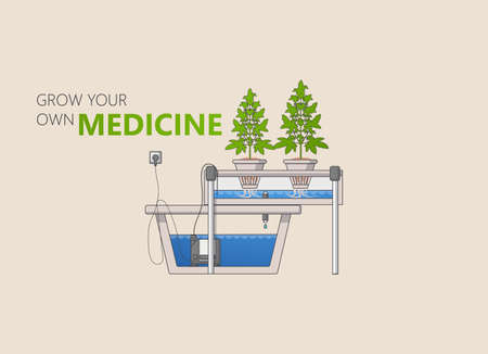 indoor bud: Medical Marijuana Hydroponics Grow Vector Concept in Flat Design.