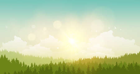 vector illustration of green landscape of sunny morning.