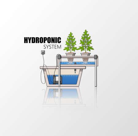 indoor: Medical Marijuana Hydroponics Grow Vector Concept in Flat Design.