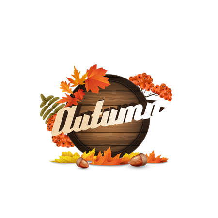 Vector realistic illustration of autumn wooden signboard. Vector autumn design. with leaves and rowan berries.
