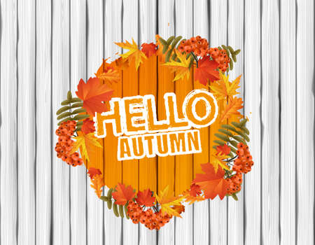 Hello Autumn Vector Lettering on Wooden Board. Vector background.