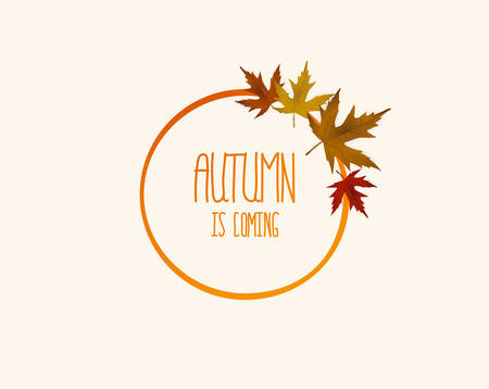 A Vector frame with elegant composition of autumn leaves. Illustration