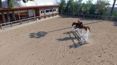 horse jump: horse jump Stock Photo