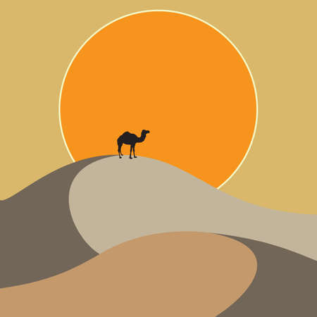 sand dunes: Camel standing on the sand dunes at sunset background. Background for travel company. Design theme tourism