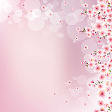 Blurred pink background with blooming cherry