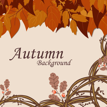 Vector background with orange, red, brown and yellow falling autumn leaves.