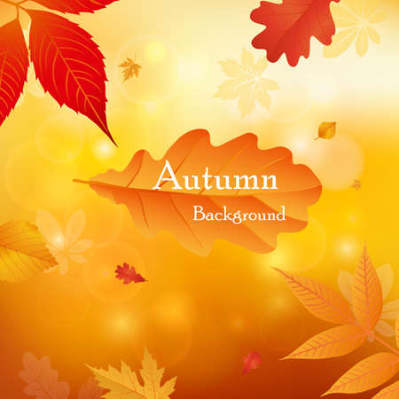 Vector illustration background Autumn falling leaves. Autumnal foliage fall and leafs flying in wind motion blur. Autumn design. Templates for placards, banners, flyers, presentations, reports.