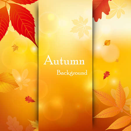 Vector background of falling autumn leaves. Autumnal foliage fall and leafs flying in wind motion blur. Templates autumn design for cards, banners, flyers, posters. Ilustração