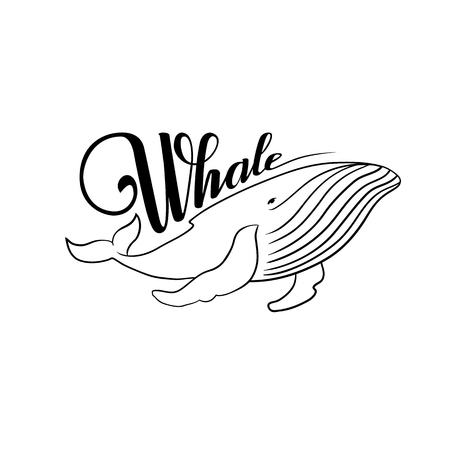 The word whale. Lettering. Whale black and white