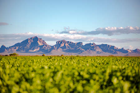Large mountain range near a meadow shot on a road trip to Arizona