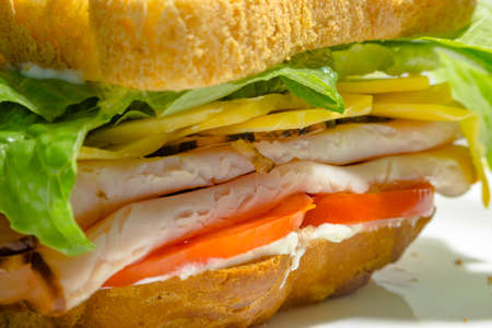 Extreme closeup of sandwich. Extreme close up of sandwich with turkey and mayo Stock Photo